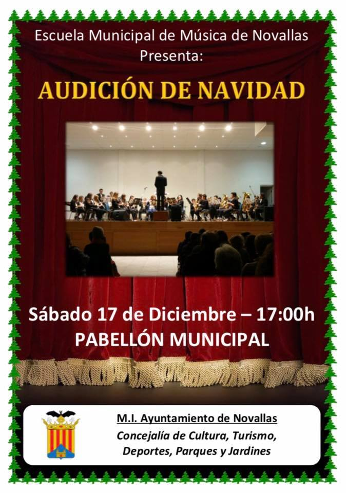 2016nov audicionnavidad cartel